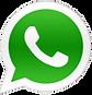 Whatsapp-logo-pc-600x314-removebg-previe