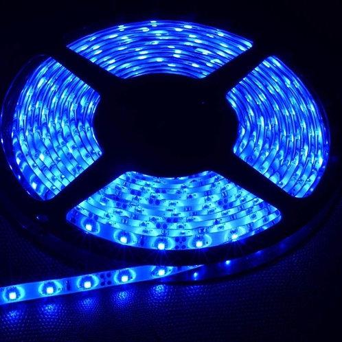 1 Fita Led 5050 Ip20 300 Leds Azul 12v+ 1 5050 Vermelha Ip20