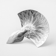Peacock Caddy Spoon