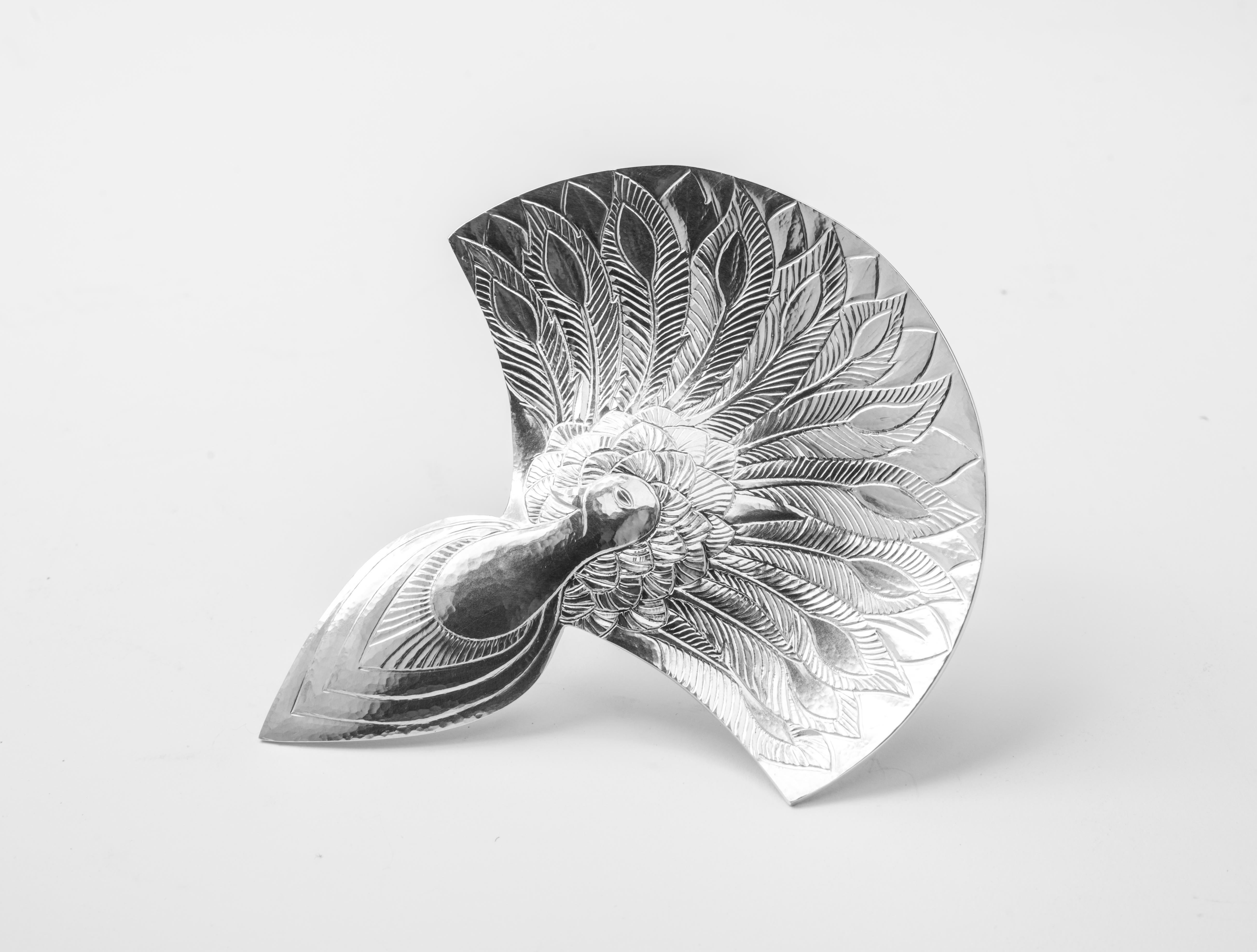 Peacock Spoon