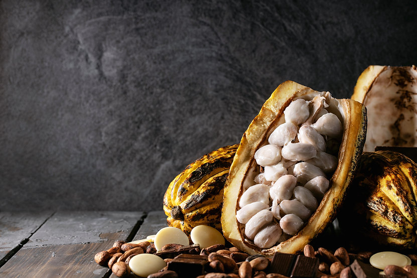 cacao-fruit-decorated-with-fresh-and-dry