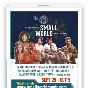 Small World Music Festival Ad