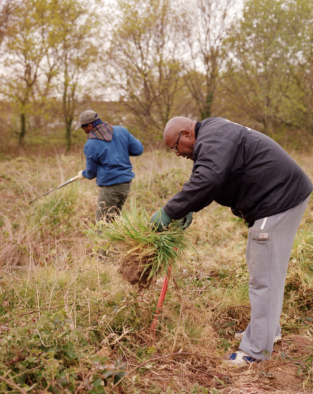 Two people work in a field, one holding garden waste, the other using a hoe.