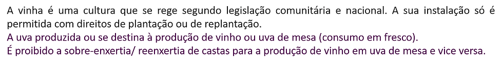 texto.png