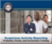 NSI-probation-parole-corrections-cover.j