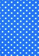 Blue%20Polka%20Dot%20Print_edited.jpg