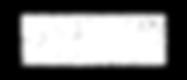The Esports Observer Logo