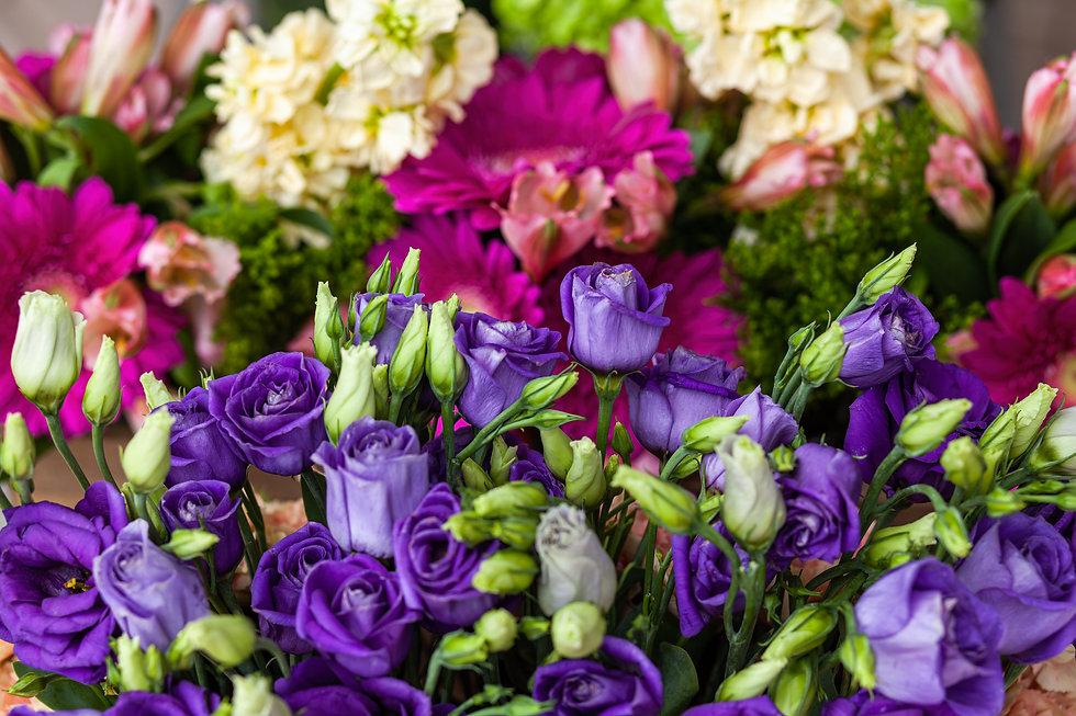 Flores Mary JPG 3.jpg