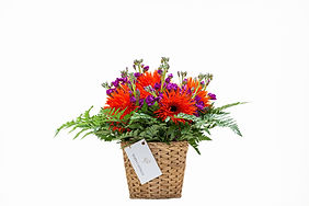 Flowers-3 comp.jpg