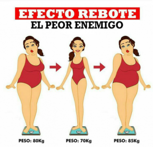 EFECTO REBOTE