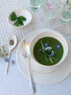 Set zuppa