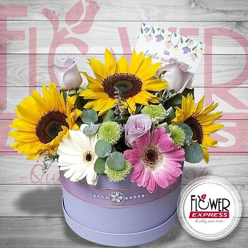Caja Lilac Exotique