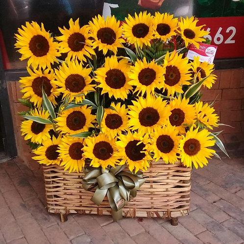 Cofre Belle Sunflowers
