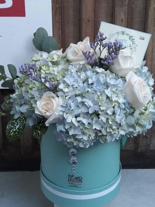 Caja Aqua  Petite Hortensias