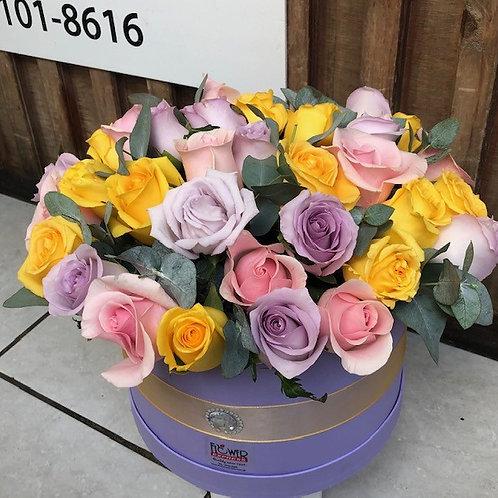 Caja Lilac 36R