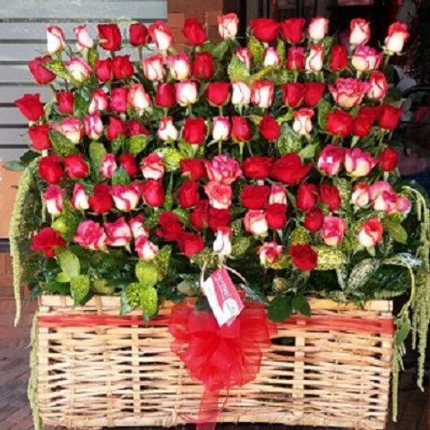 Cofre 96 Rosas