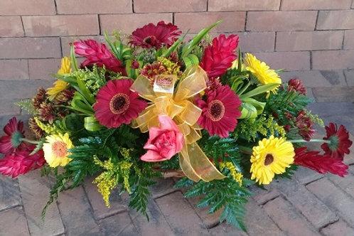 Palmatoria de Flores