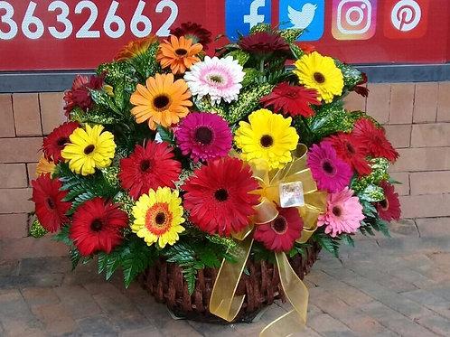 Concha de 48 Flores