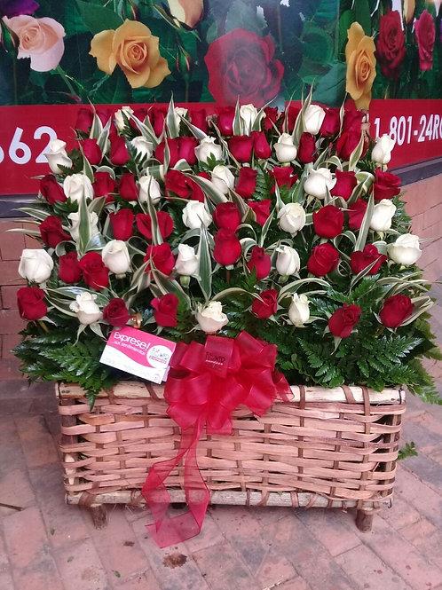 Cofre de 72 Rosas
