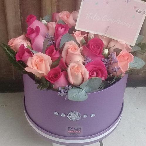 Caja Violet 24 Rosas