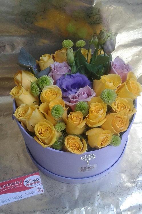 Caja Lilac Lis