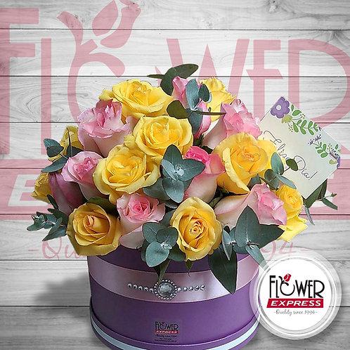 Caja Violet 36R