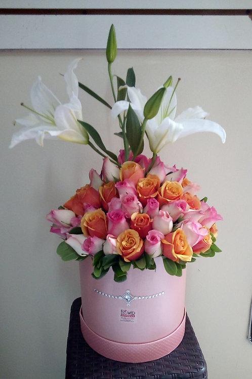 Caja Pink Pearl Madi - Tall
