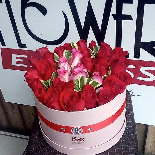 Caja Pink 36R