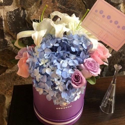 Caja Violet Tall Hortensias