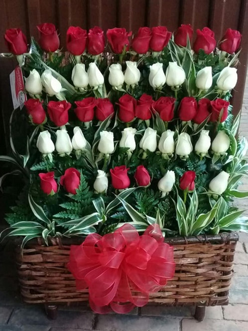 Cofre de 48 Rosas