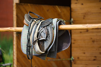New England Saddle Fit Repairs