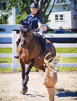 Community Horse Benefit Scavenger Hunt