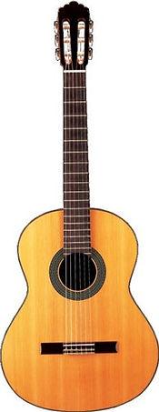 Guitares en Sarthe