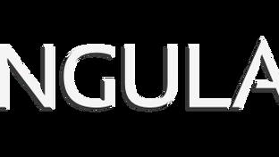 AngularJS - Making a Web App