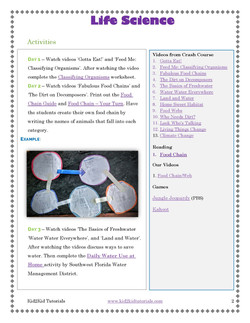 Life Science Food Web_Page_03