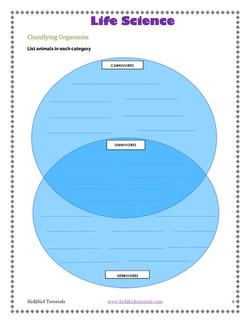 Life Science Food Web_Page_05