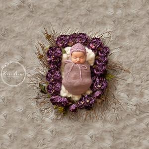 Krista Kwiatanowski Newborn Session