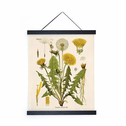 Vintage Dandelion Canvas w/Magnetic Hanging Frame
