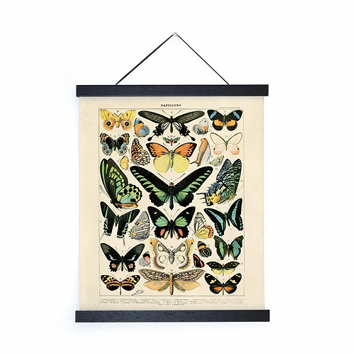 Vintage French Butterfly Canvas w/Magnetic Hanging Frame