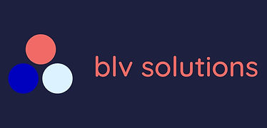 BLV Solutions business logo