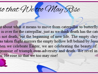 He Rose so that We too May Rise!