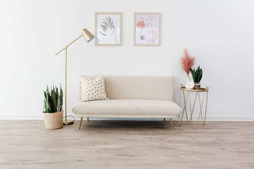 white faux velvet couch with gold pillow. 2 frames are hanging above the couch. There's a brass cantilever lamp and side table with plants for decoration.