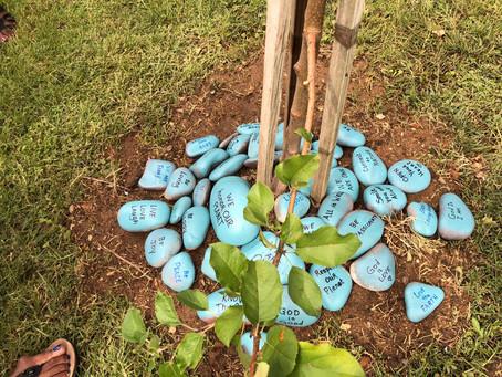 CSLB dedicates Apple Tree