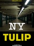 NY Tulip