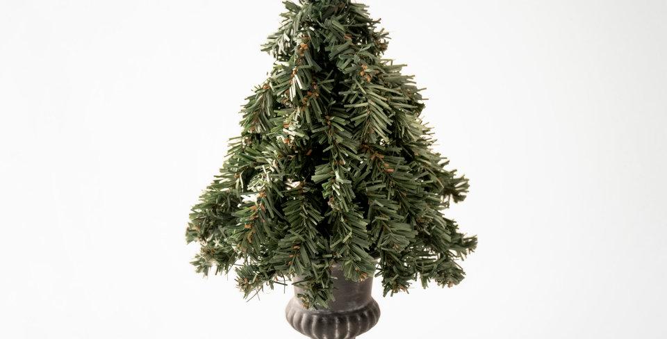 TT Nude Tree-Basic / Green
