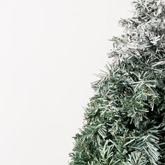 """カラー:スノー """"グリーン""""をベースに上部にホワイト重ねたクリスマスらしい色味に仕上げています。"""
