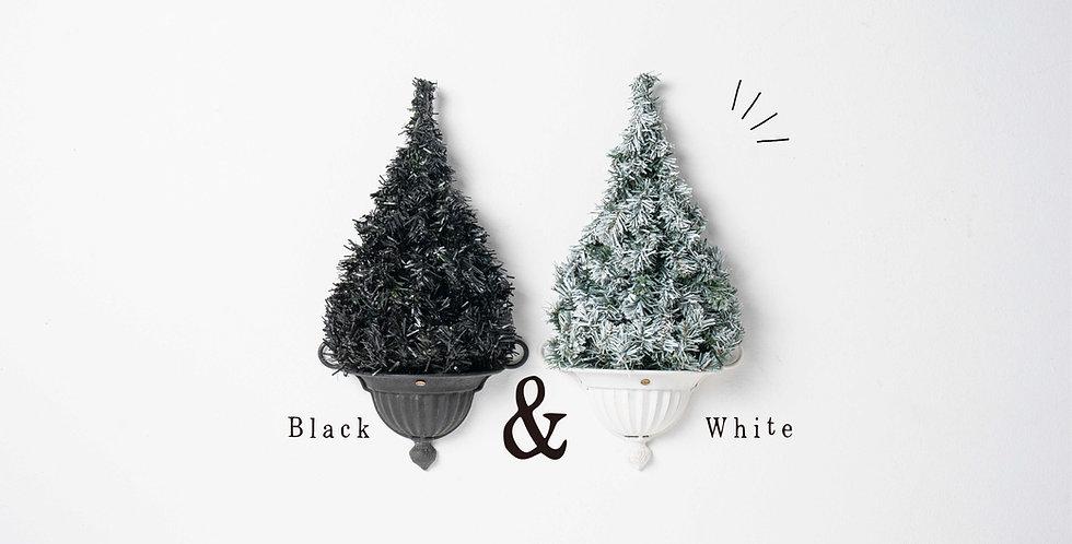 WD Nude Tree / Black & White