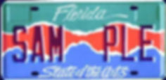 license-plate.jpg