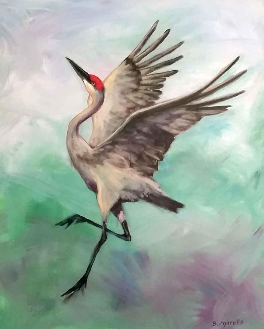 Mating Dance of the Sandhill Crane