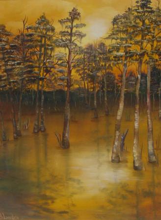 Cypress Swamp Aglow